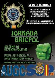 CARTEL-JORNADA-BRICPOL-6