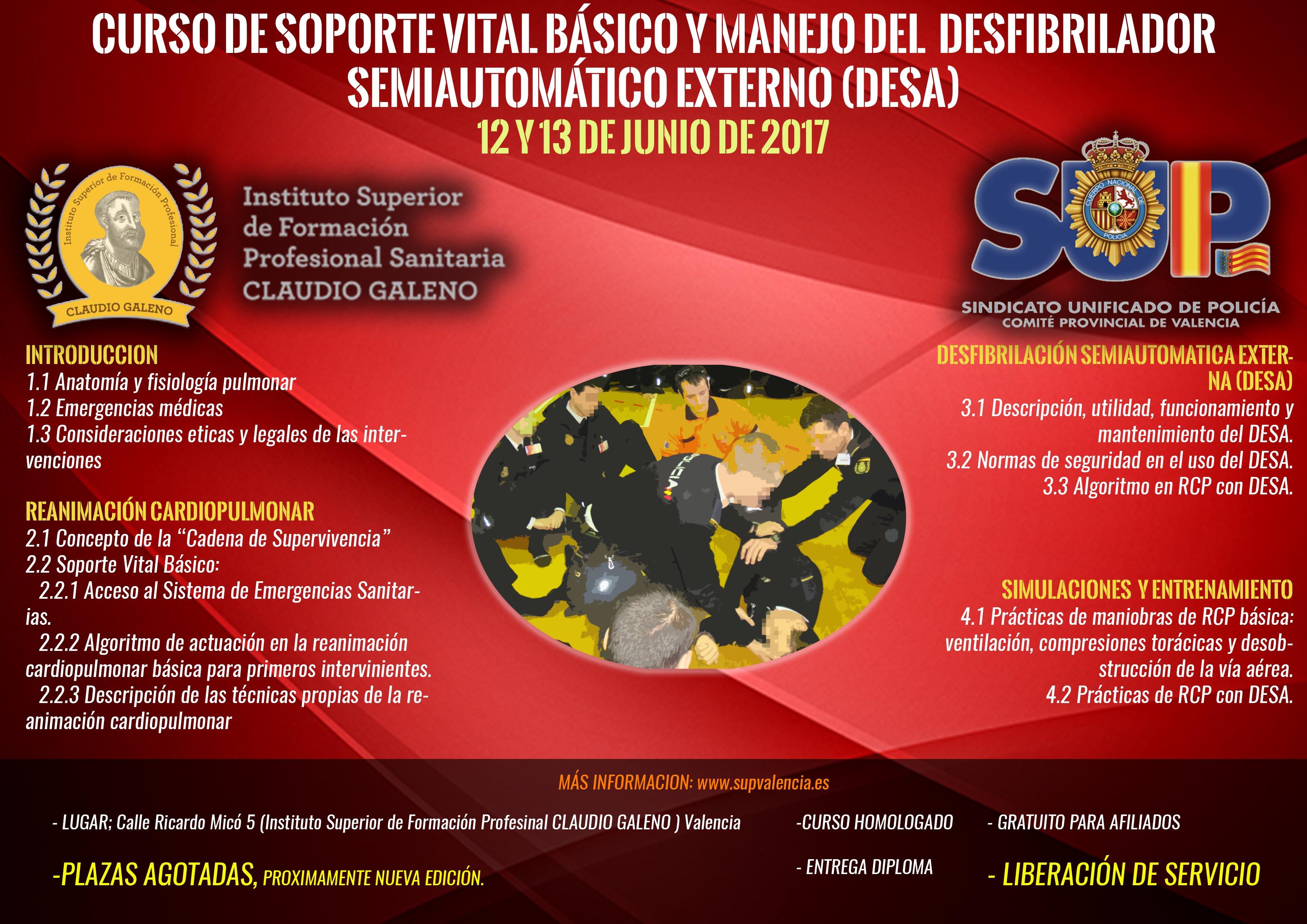 curso RCP Y DESAweb